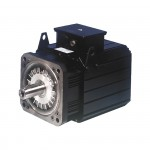 SBM Series Brushless Servomotors