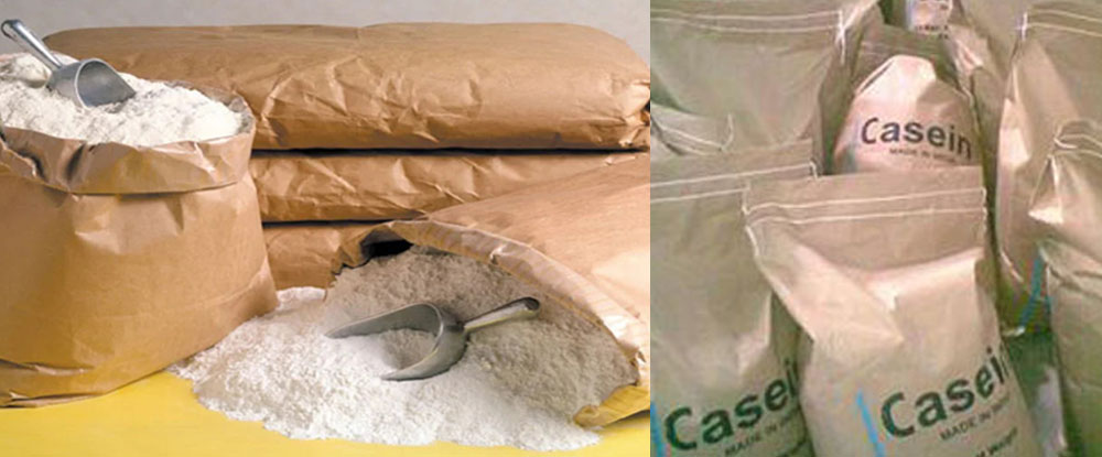 Casein highly Nutritional for Pharmaceutical Products